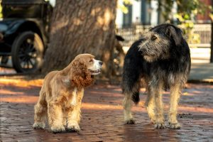 Disney+ exclusive Lady and the Tramp filmed on location in Savannah, Georgia
