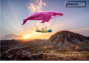 Spotlight on FOCUS exhibiting partner Fresco Film