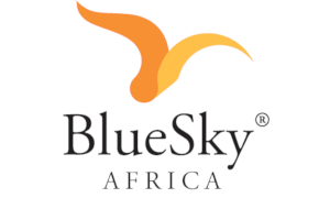 Blue Sky Films